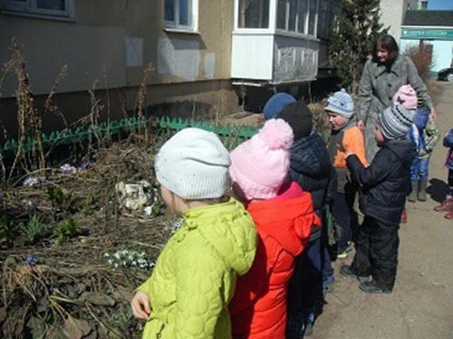 У дошколят в группе появилась поляна первоцветов