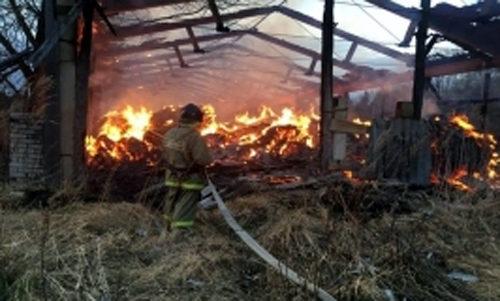 В деревне Суравцово горел сенной сарай