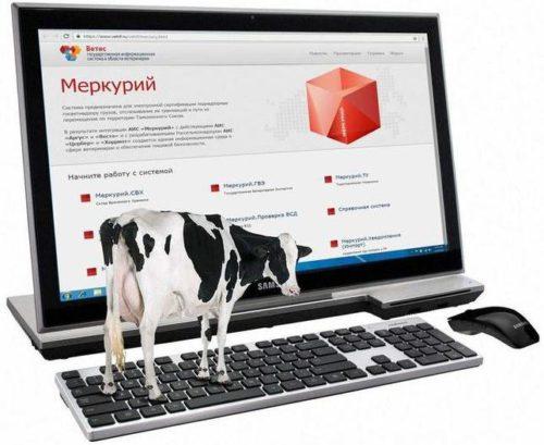 О необходимости своевременной подготовки к переходу на электронную ветеринарную сертификацию