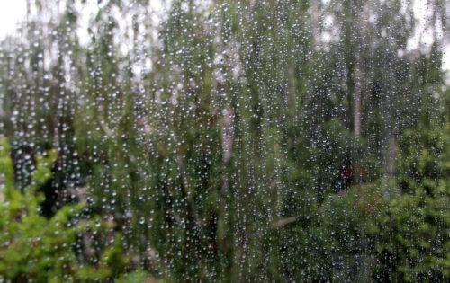 Синоптики предупреждают о ливневых дождях и грозах