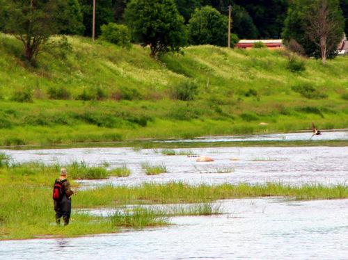 8 июля - День рыбака