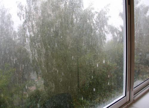 21 августа ожидаются сильный дождь и ветер