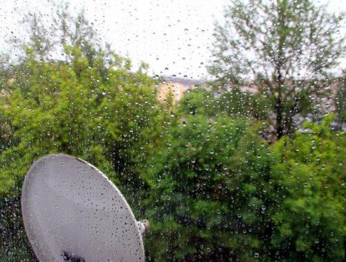 Дожди и грозы не исключены