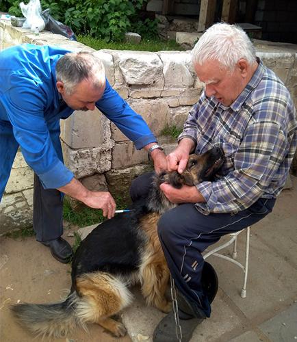 Ветеринар - это призвание